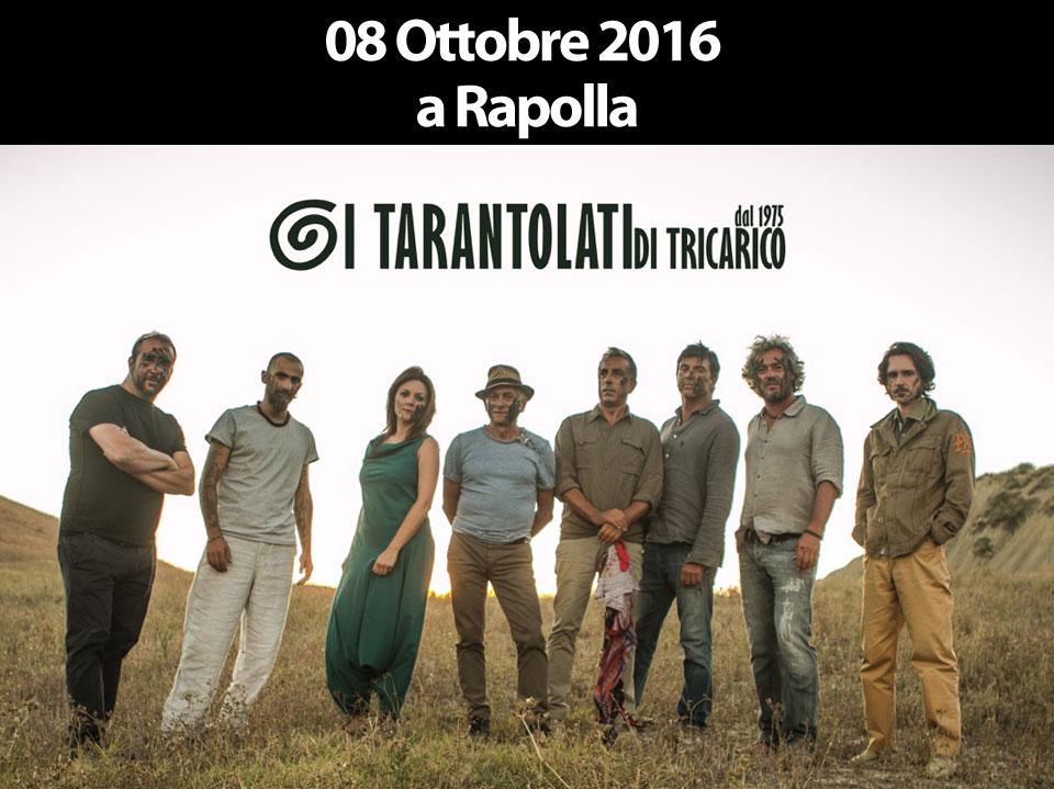 concerto dei tarantolati di tricarico, World Music