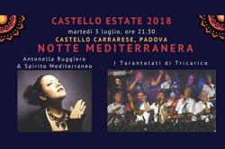 Notte Mediterranea. Antonella Ruggiero e Tarantolati di Tricarico.