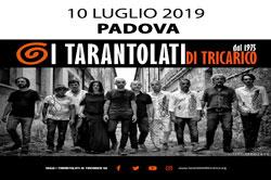 Concerto Tarantolati di Tricarico